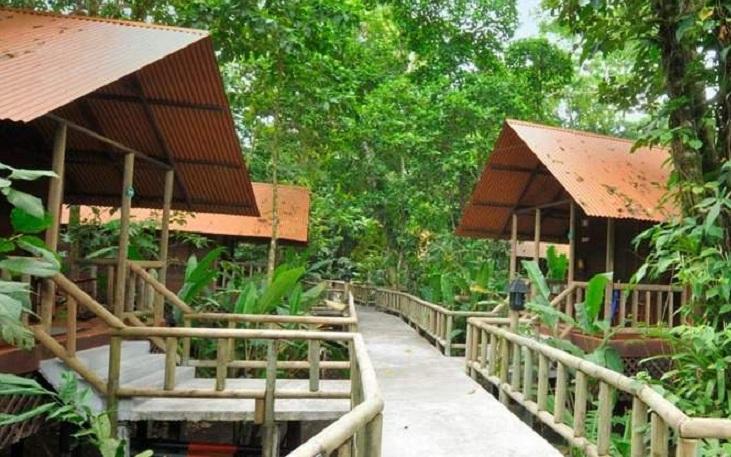 Pachira Lodge (TOR)