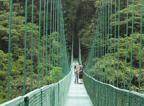 Caminata Puentes Colgantes - Monteverde