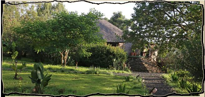 Omo Eco Lodge